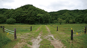 farm_design_gate