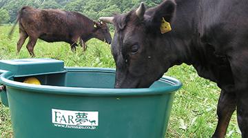 farm_design_suisou