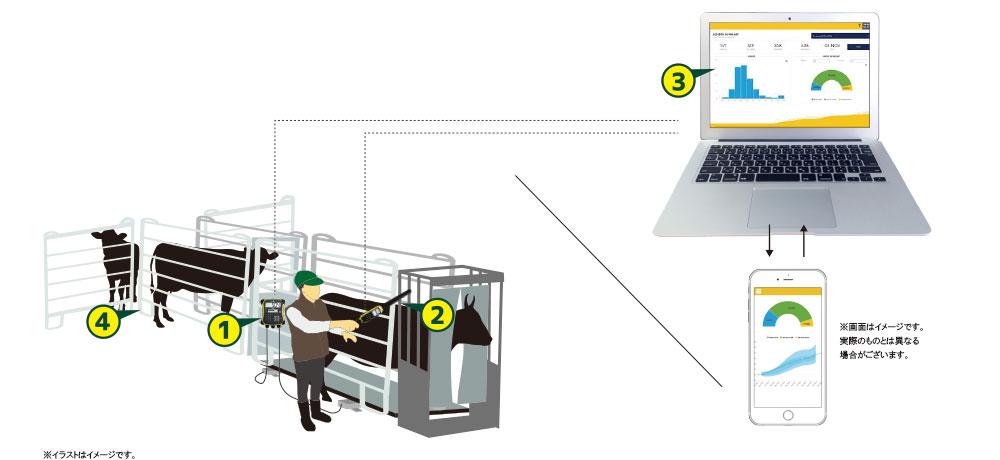 [牛群管理システム]スケールウェイ~体重測定システムと電子タグ管理システム~